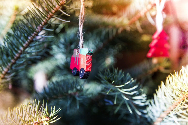 Weihnachtsfest / Pikkujoulu