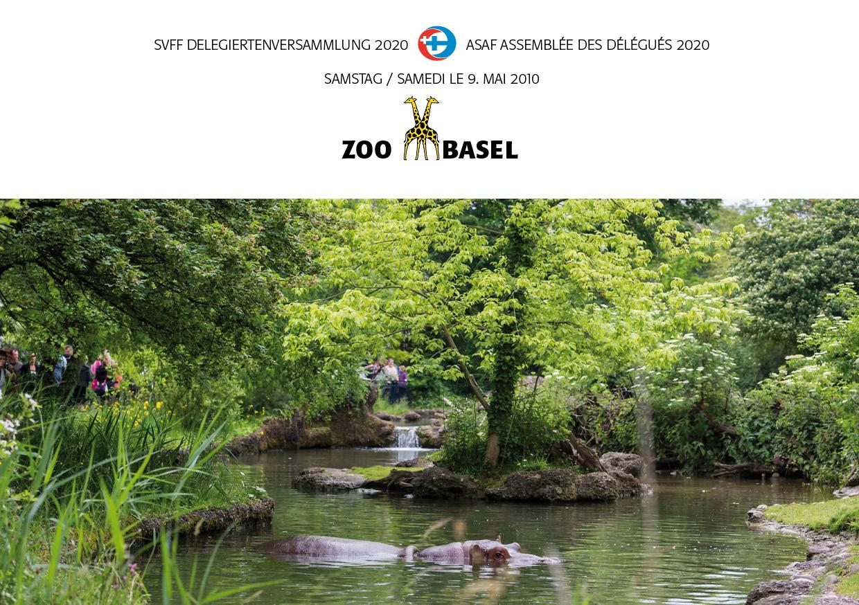 DV SVFF 2020 in Basel